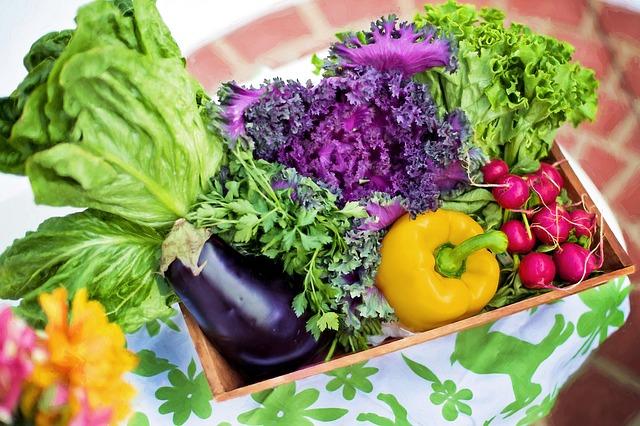 Dukanova dieta je klíčem ke správnému hubnutí 4