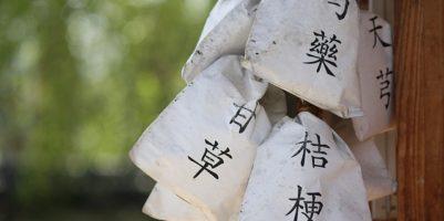 čínské, Medicína