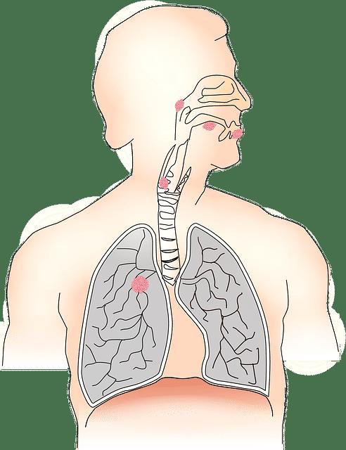 Jak přestat kouřit aneb Proč a jak to zvládnout 4
