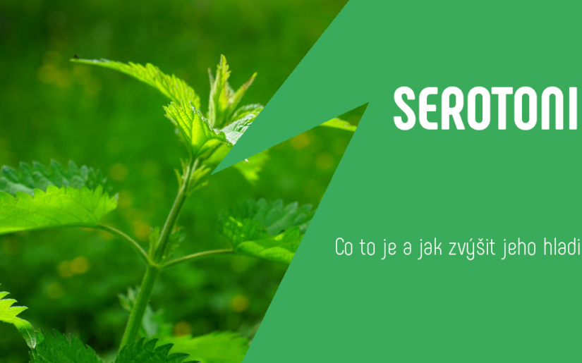 serotonin-jak-zvysit-jeho-hladinu