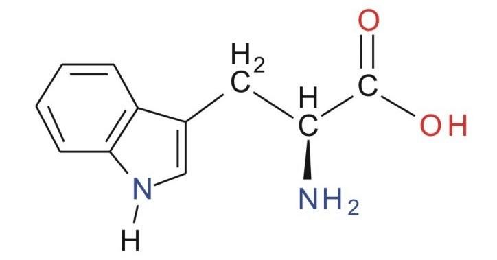 tryptofan