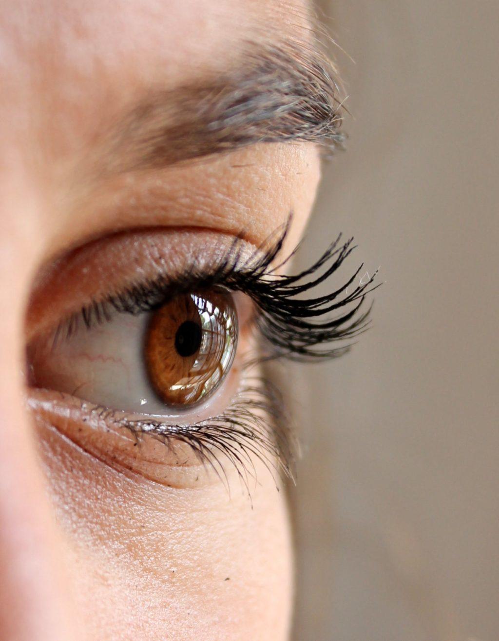 eye-eyelashes-face-woman-63320