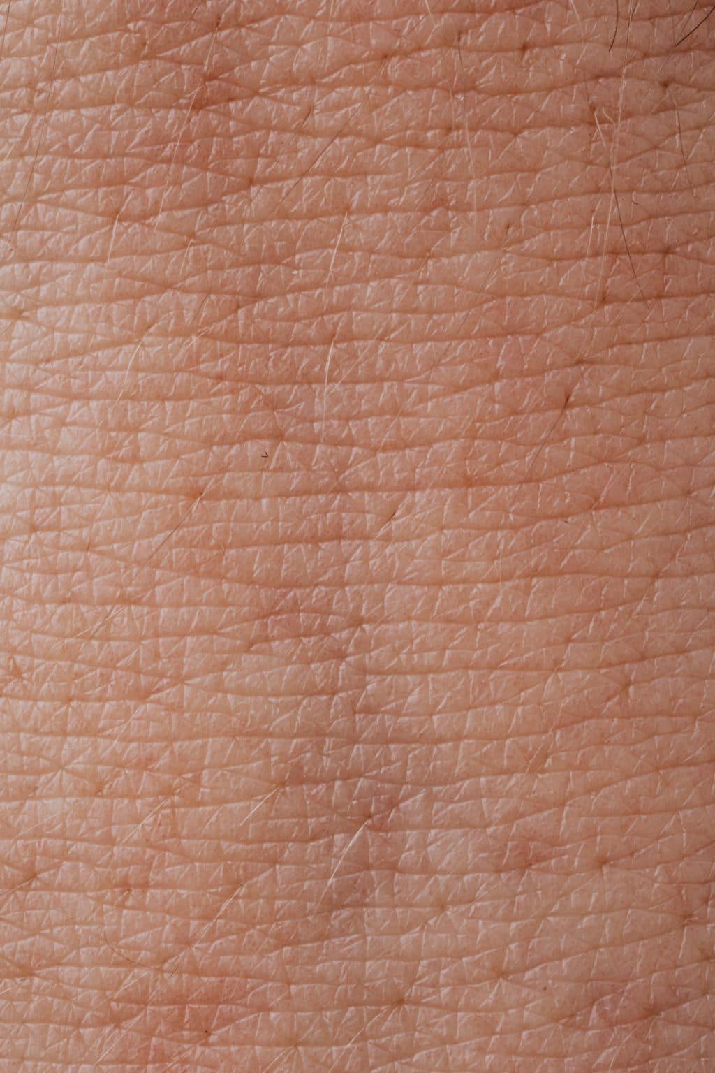 pexels-karolina-grabowska-4046567